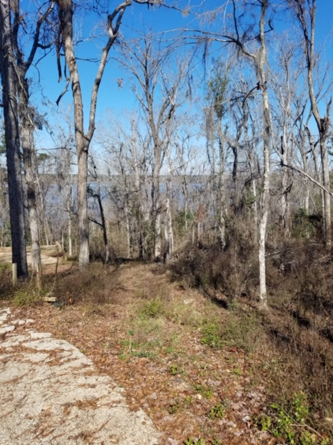 Decatur County – Two Building Lots on Flint River