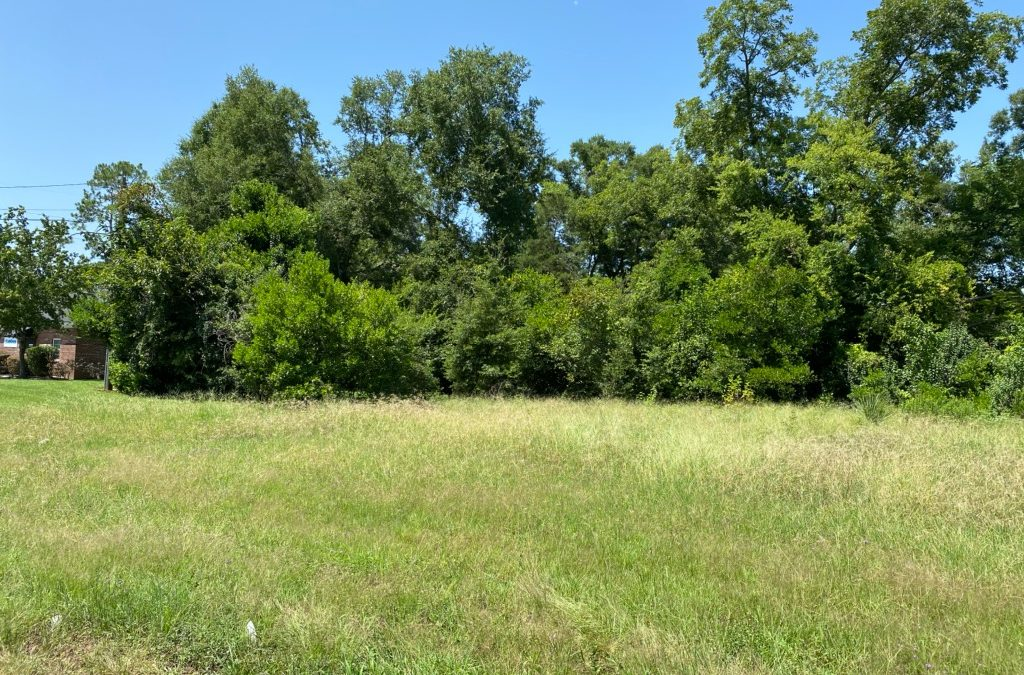 Dougherty County – Investment Property – 3.05+/- AC